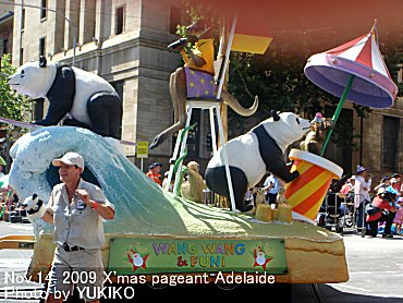 Adelaide20091114-002.jpg