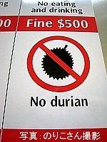 durian-photo2.jpg