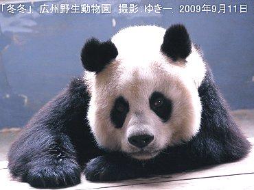 kousuyasei20090911-003.jpg