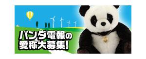 logo_panda.jpg