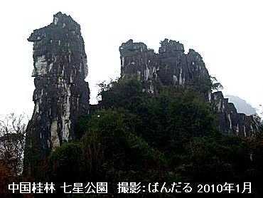 pandaru002.jpg