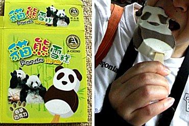 taiwan-panda-ice2009.jpg