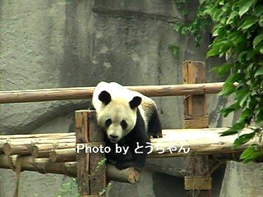 yuuhin2010may02.jpg